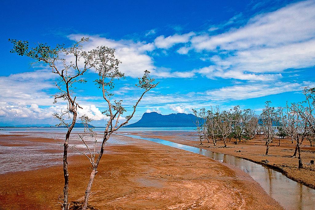 バコ国立公園