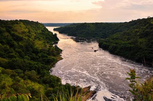 長い 世界 川 一