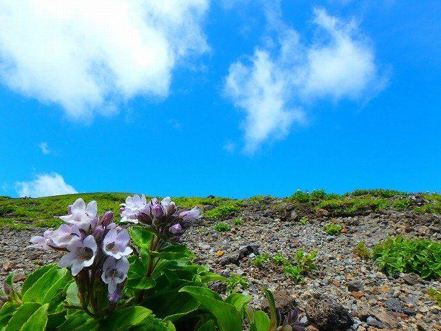 樽前山で登山を楽しむ方法!初心者向けの登山ルートは?服装などの準備は?
