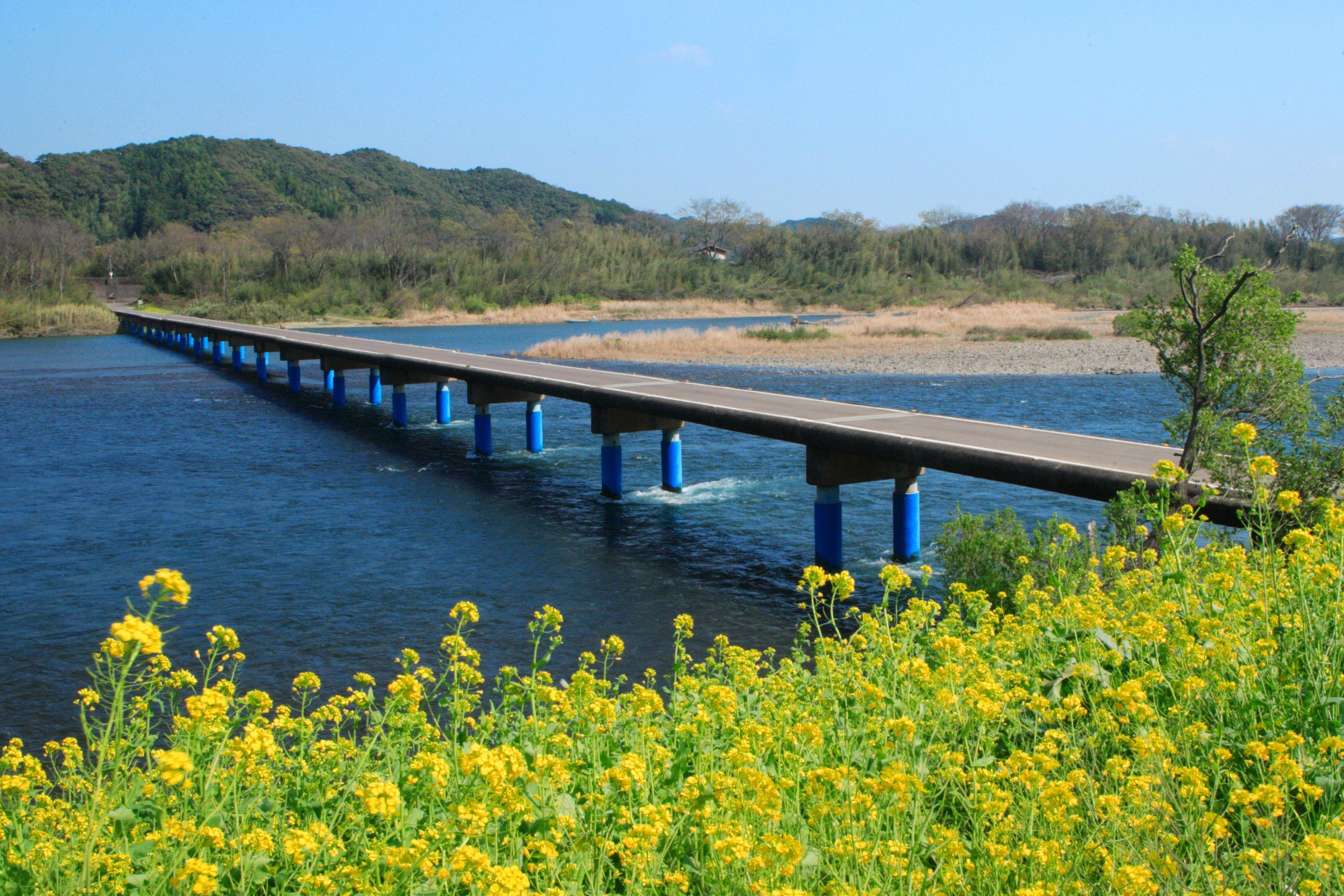 四万十川の沈下橋!おすすめはここ!佐田沈下橋が有名!アクセスなど