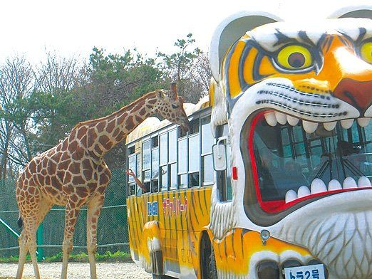 一関市の観光スポットおすすめまとめ!グルメ情報あり!子供と楽しむ!