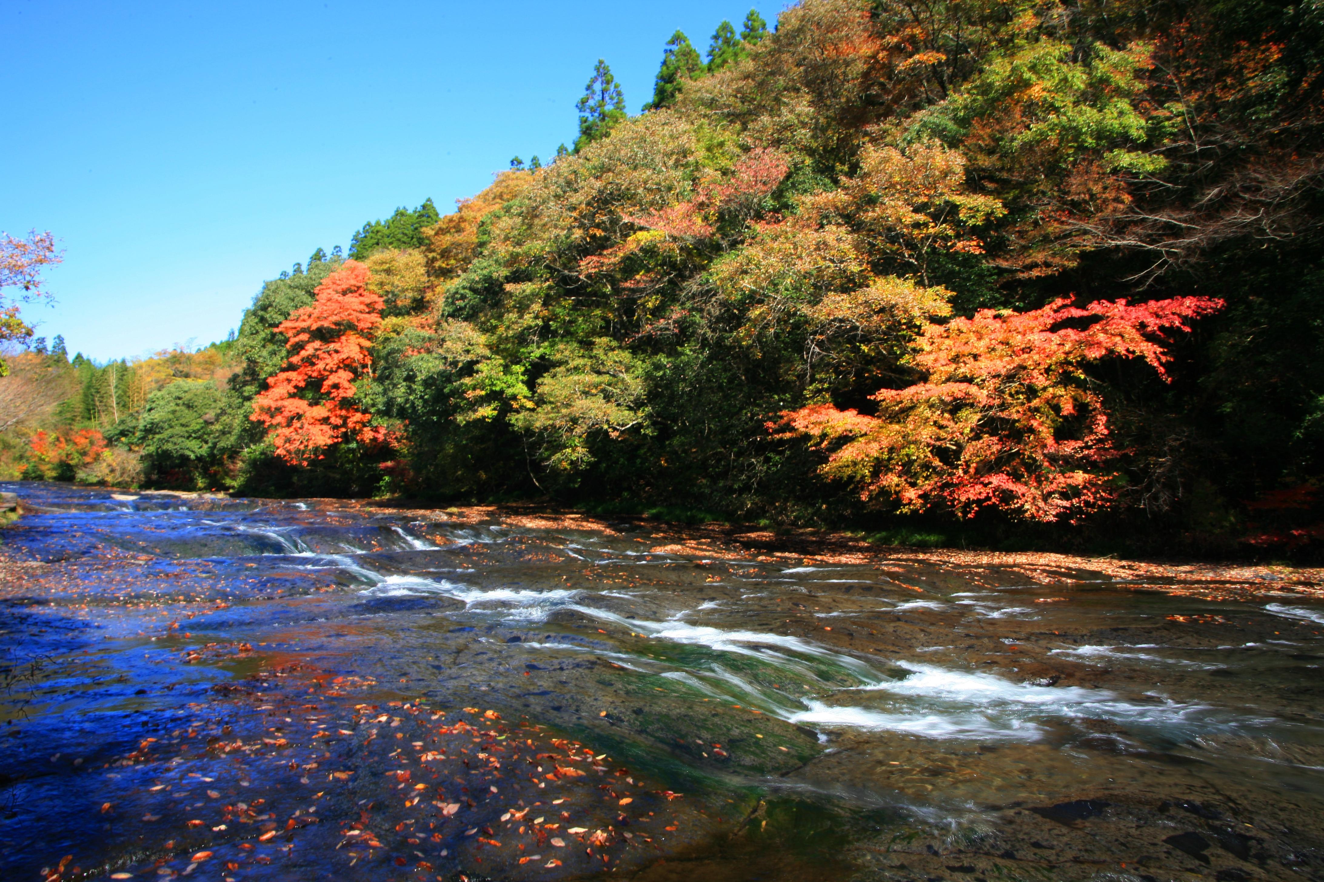 遊水峡キャンプ場を満喫!夏は水遊び・秋は紅葉で熊本を楽しむ!