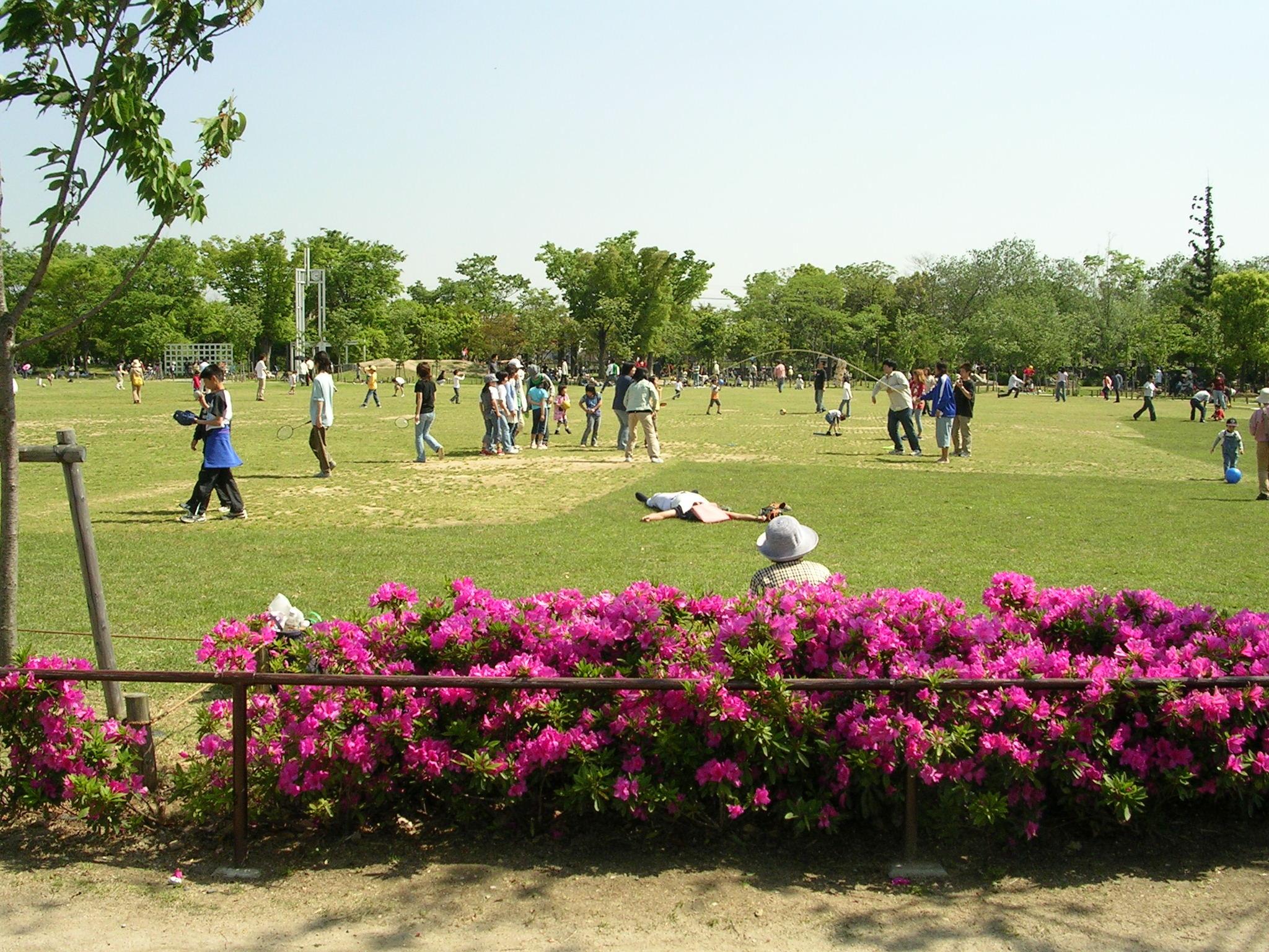 京都で子供が楽しめる遊び場まとめ!人気でおすすめの穴場をご紹介!