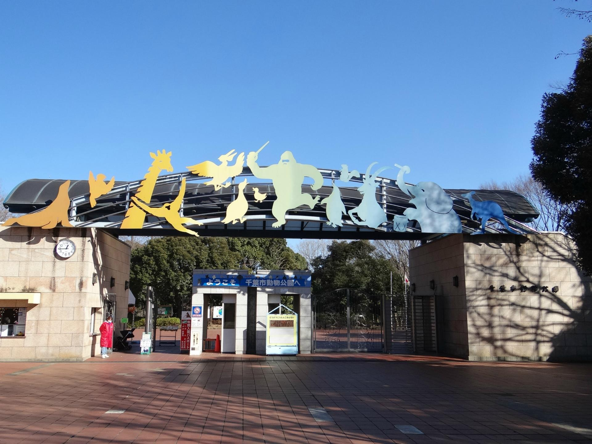 千葉市動物公園へのアクセスや料金を紹介!レッサーパンダの風太くんに会える!
