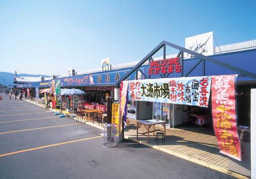 日本海さかな街で海鮮丼を食べるなら?おすすめ・人気のお店も紹介!
