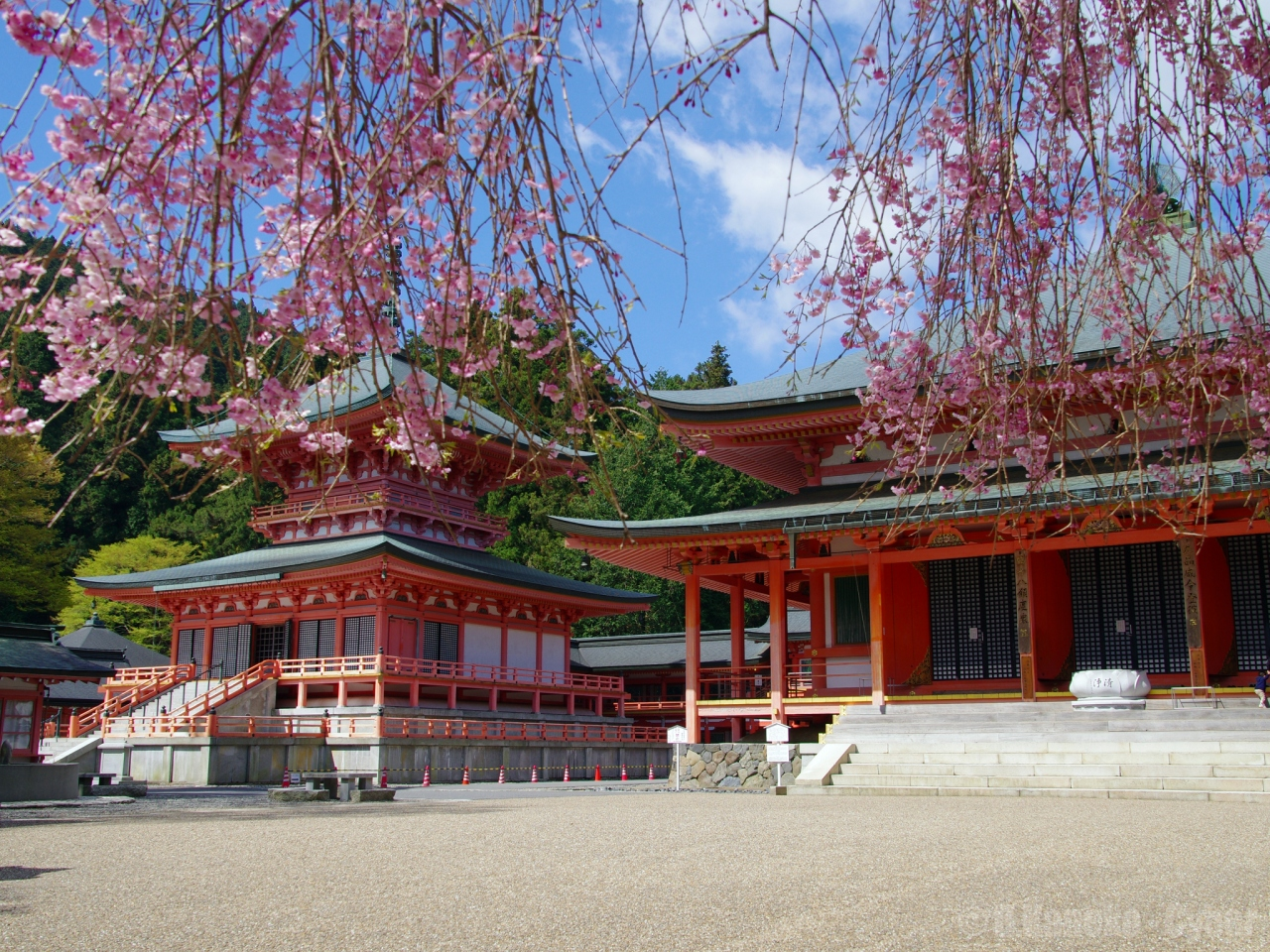 比叡山延暦寺へのアクセスは?観光で訪ね御朱印を頂こう!桜や紅葉も美しい!
