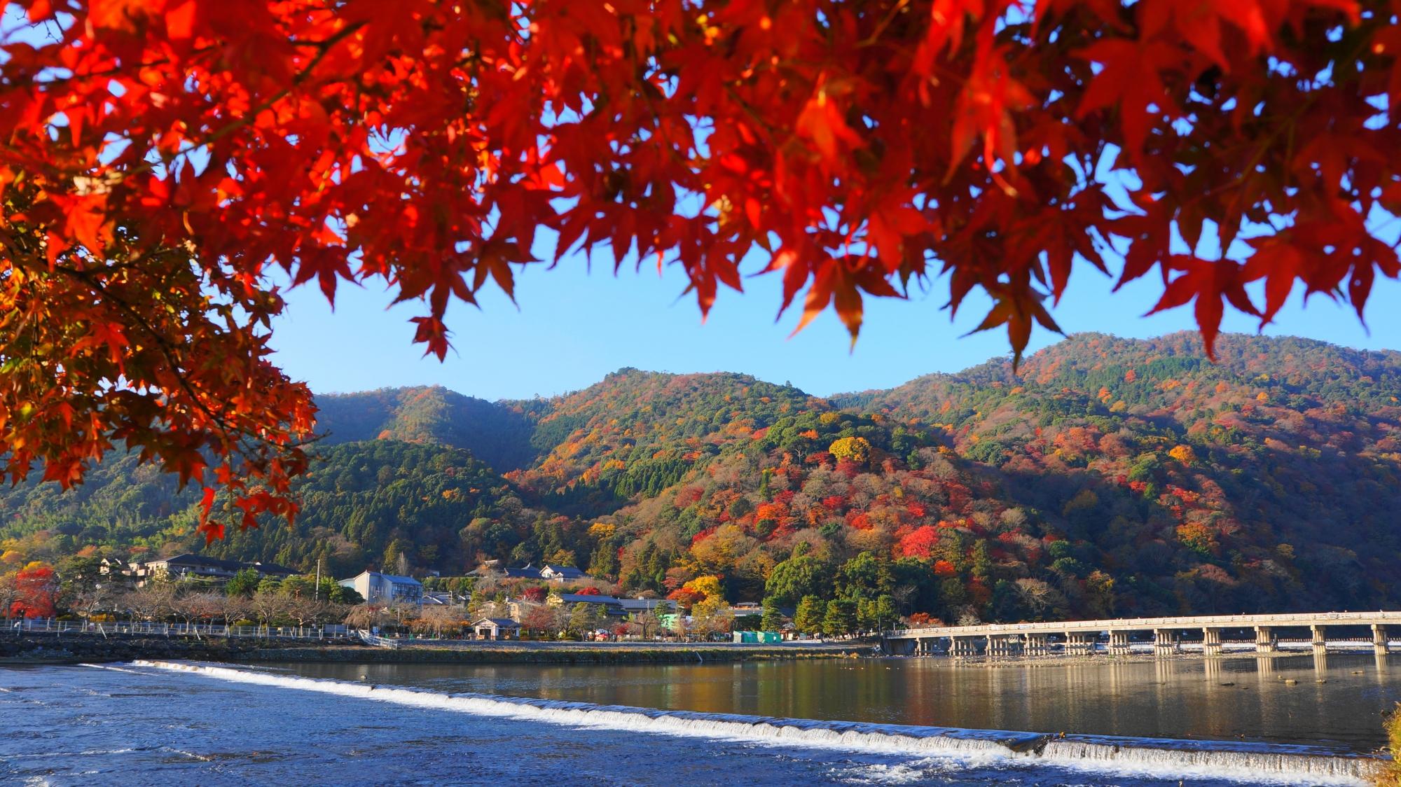 京都嵐山を観光!人気スポットからおすすめの名所をご紹介!