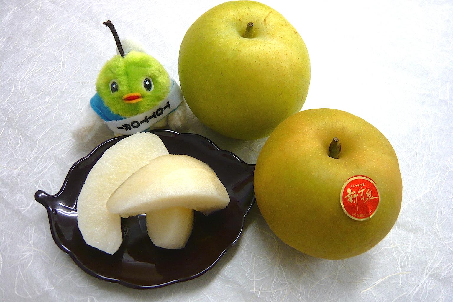 鳥取人気お土産ランキングTOP15!おすすめ銘菓・名産品を紹介します!