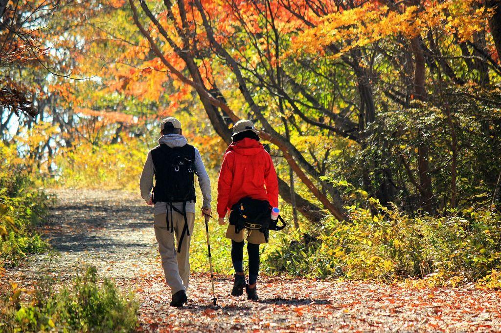 那須で山登り!子供と一緒にトレッキングを楽しもう!茶臼岳・ロープウェイも!