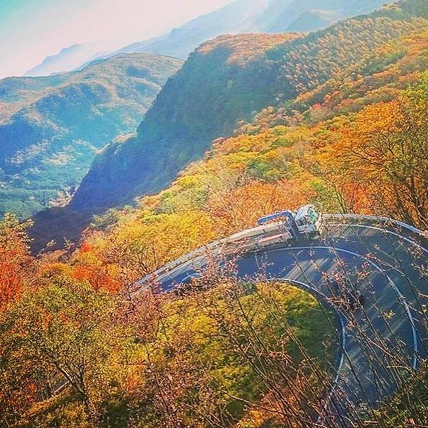日光「いろは坂」紅葉がすごい!絶景ポイントへドライブ!隠された秘密って?