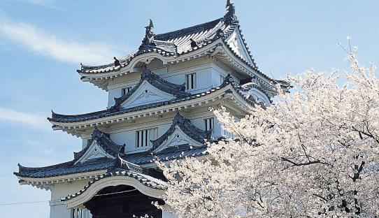 宇和島城へ観光!駐車場やアクセスまとめ!歴史や見どころを調査!