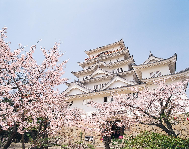 福山城は桜の名所!福山城公園でお花見を楽しもう!開花時期などを紹介!