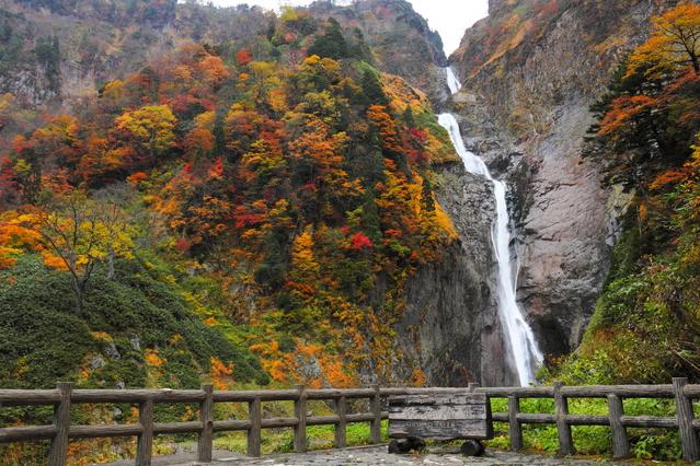 称名滝の紅葉は見逃せない!アクセス情報!日本一の絶景は迫力満点!
