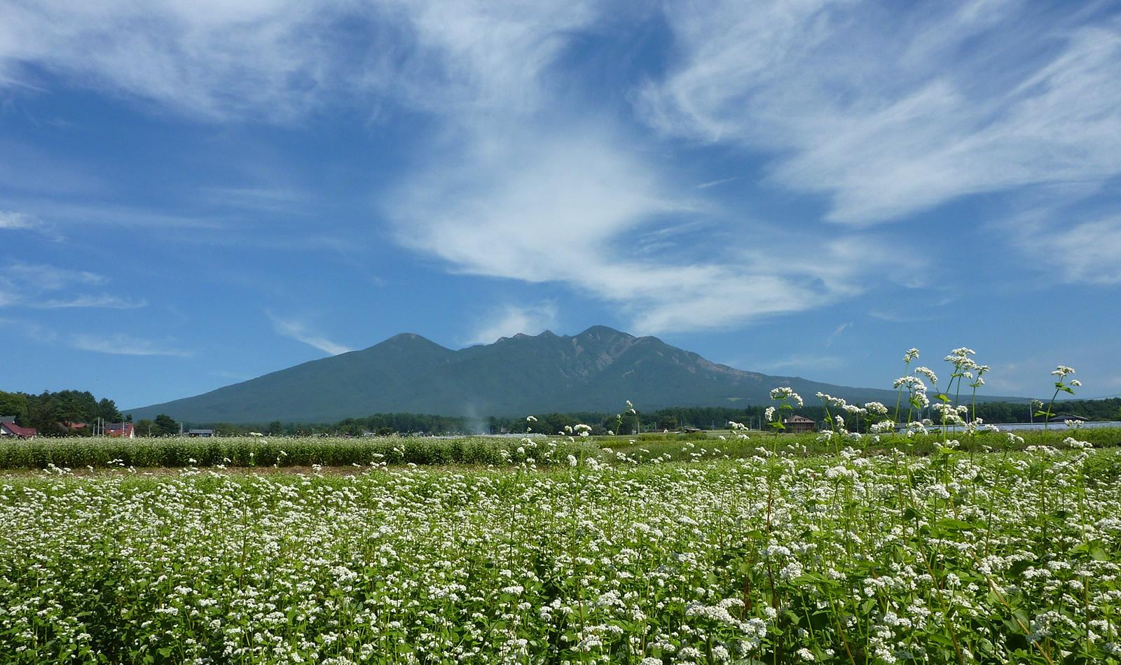 小淵沢観光おすすめスポットランキング!温泉や名所まとめてご紹介