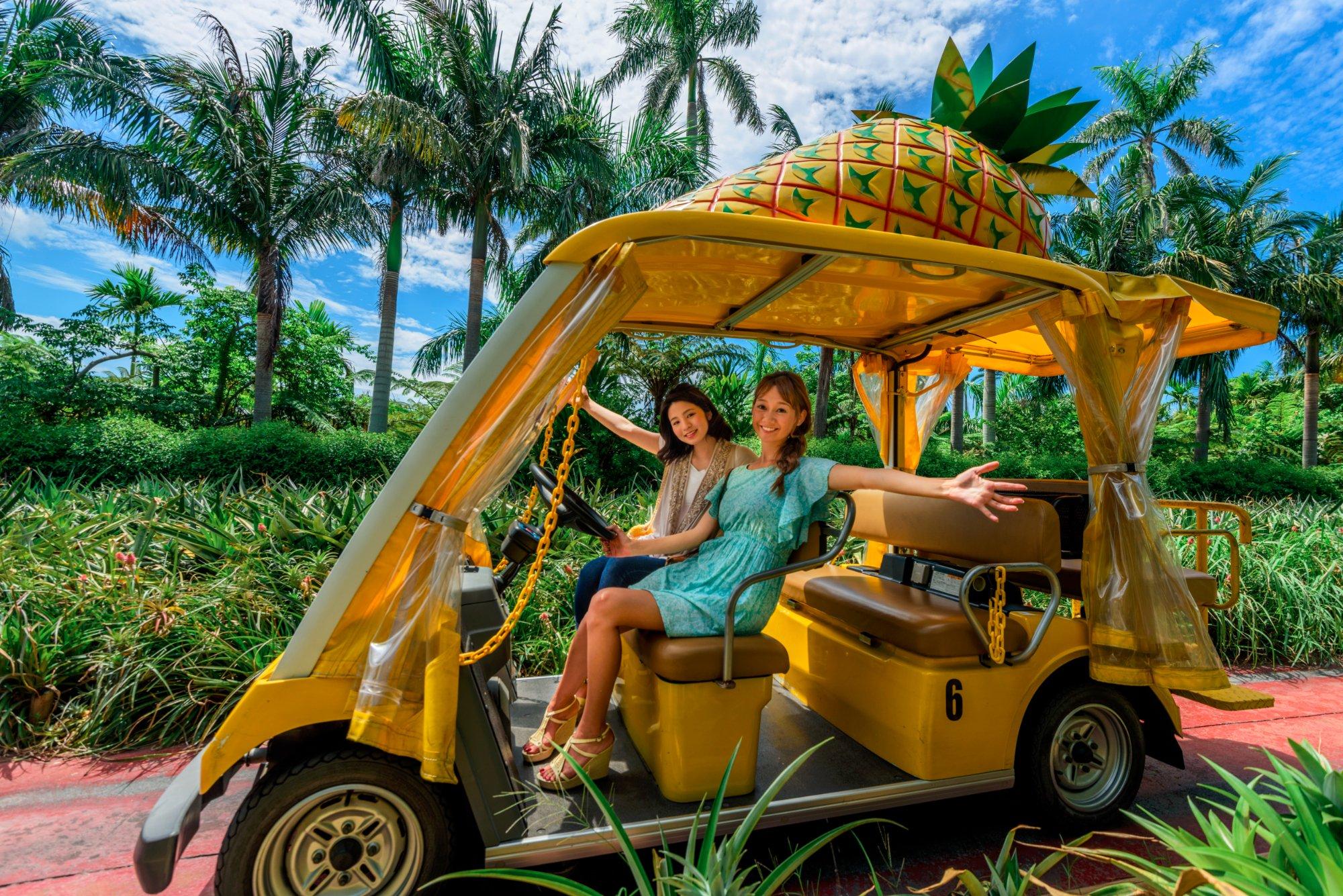 沖縄「ナゴパイナップルパーク」の料金や営業時間は?人気の食べ放題もあり!