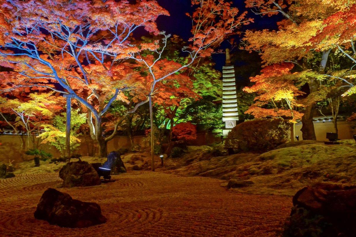 松島のライトアップが美しい!紅葉シーズンの見頃は?アクセス・駐車場をご紹介