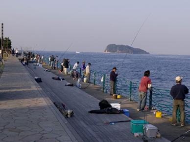 横須賀でおすすめの釣り場は?子連れでも楽しめるポイントはある?