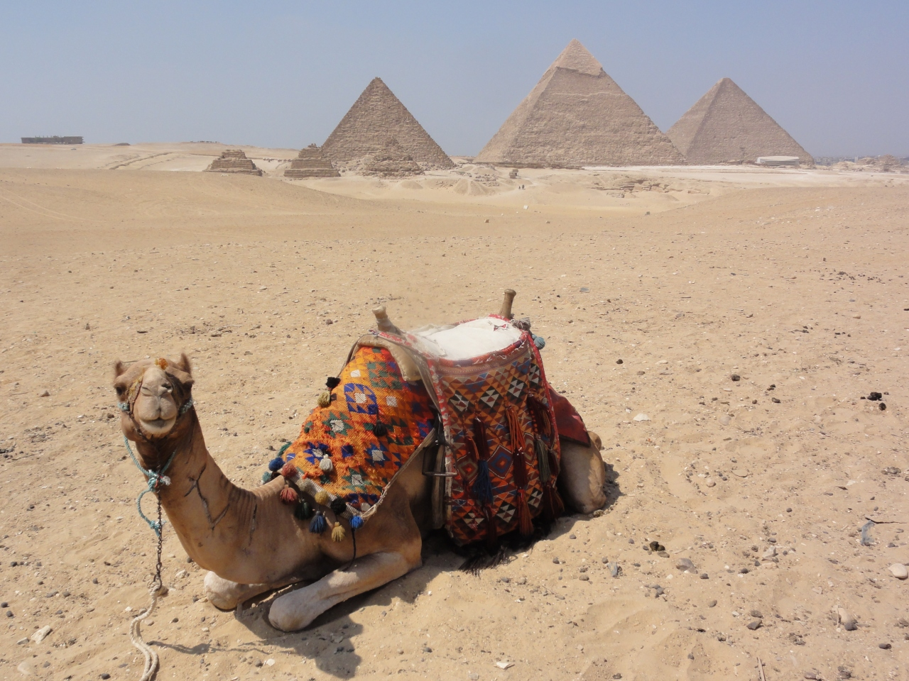 エジプト観光!おすすめ世界遺産・名所11選!現地のお土産も!