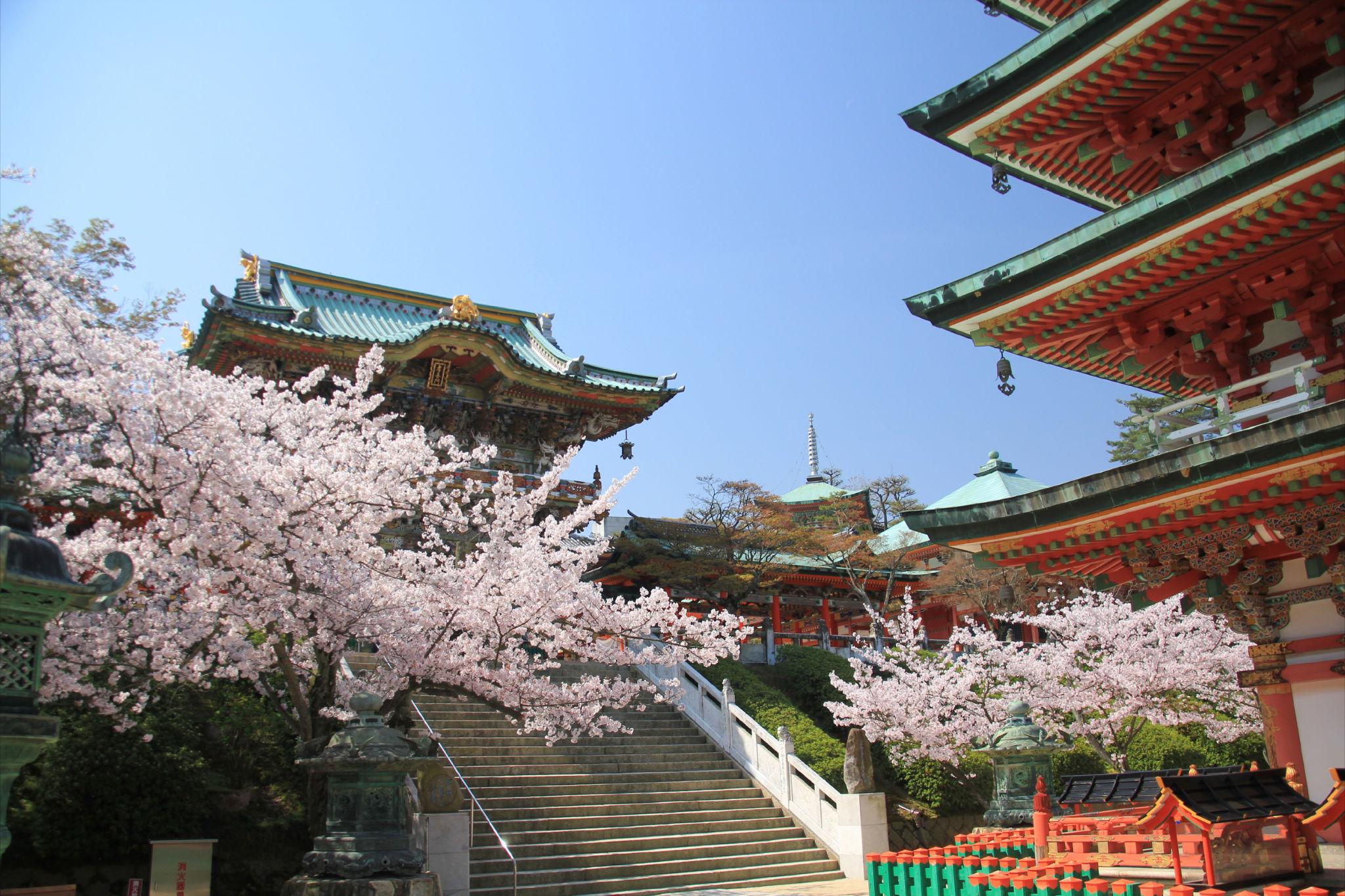 耕三寺は未来心の丘で話題のお寺!博物館など散策スポットも!アクセスは?