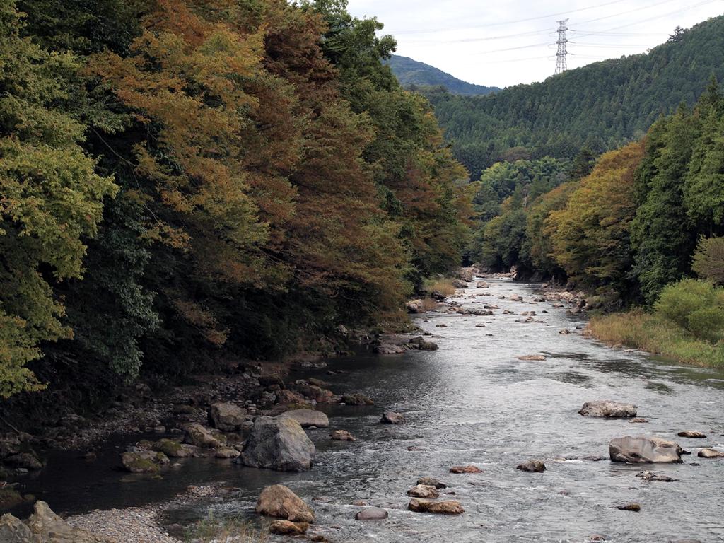 九州キャンプ場おすすめガイド!人気のコテージは温泉付き?ペット可の施設も