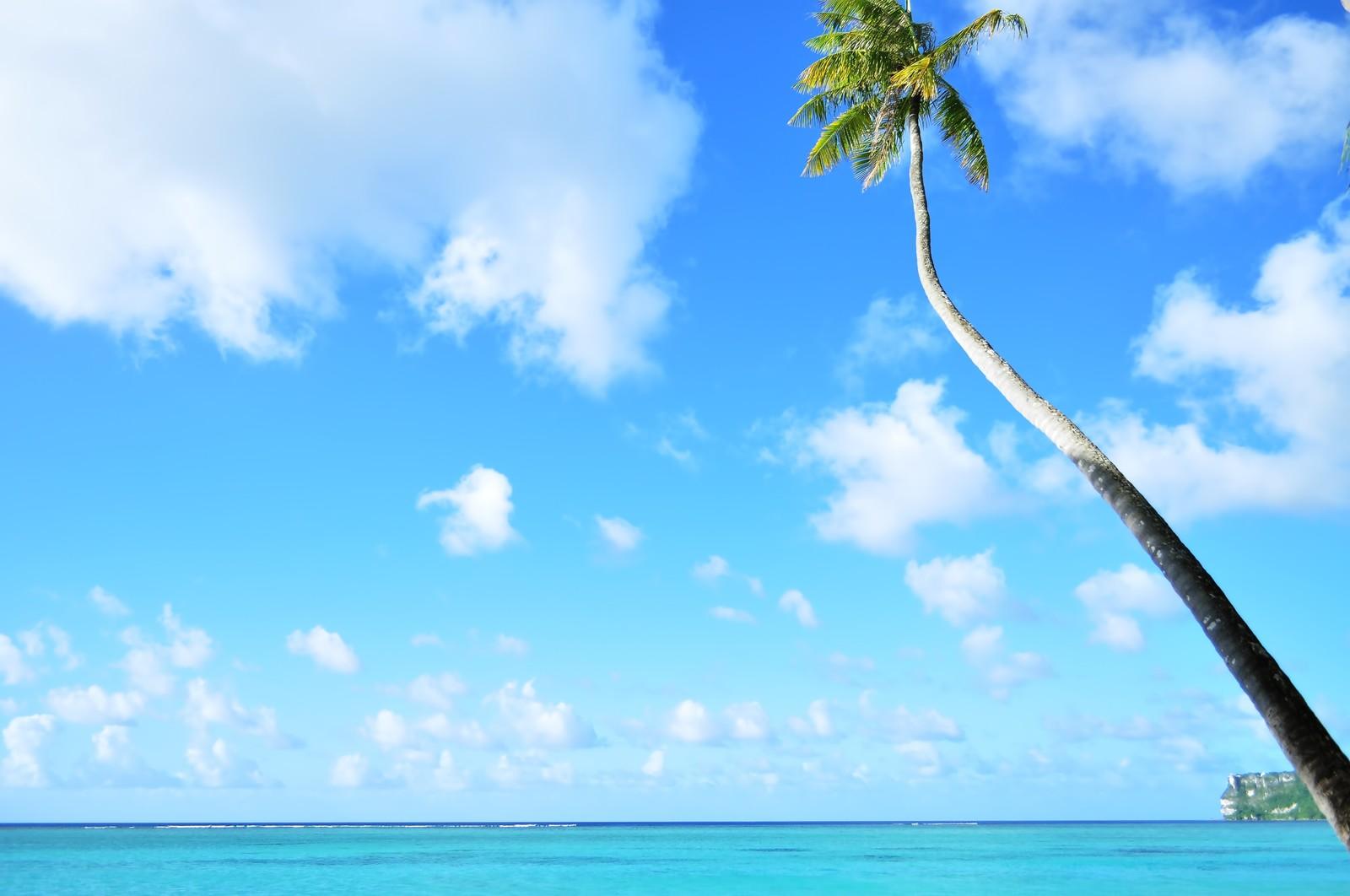 ハワイ島の観光スポットおすすめBEST15!子連れ旅行でも楽しめる!