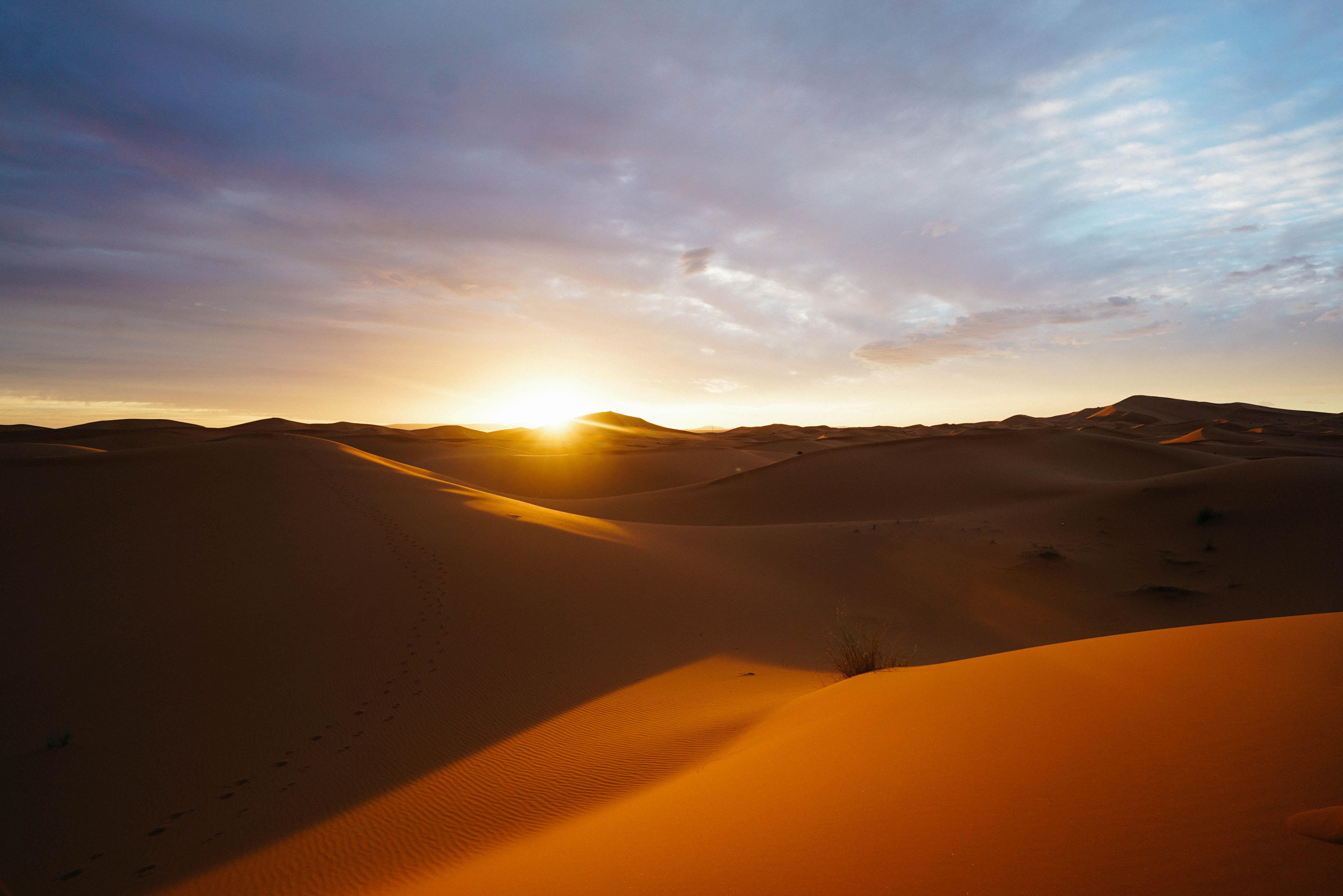 サハラ砂漠の観光はラクダに乗ってオアシスめぐり!絶景の夕日はおすすめ!