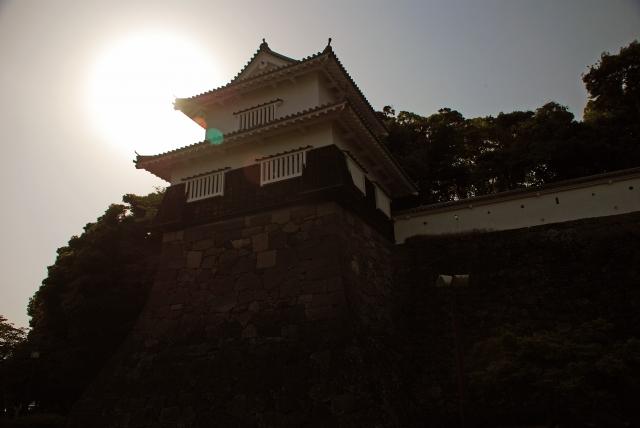 長崎県の大村の公園は桜や光のアートで人気!アクセスやイベントなど紹介!