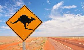オーストラリア留学ガイド!費用や目的・おすすめ学校まで!準備するものは?
