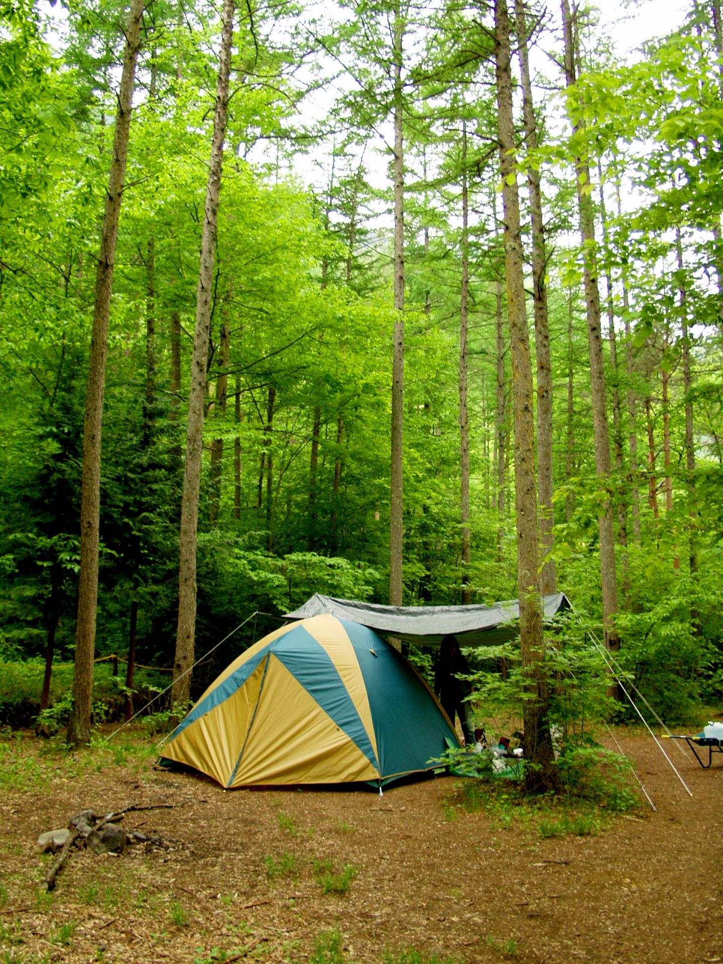 福島県おすすめキャンプ場&コテージ特集!無料やペット可の施設が人気!