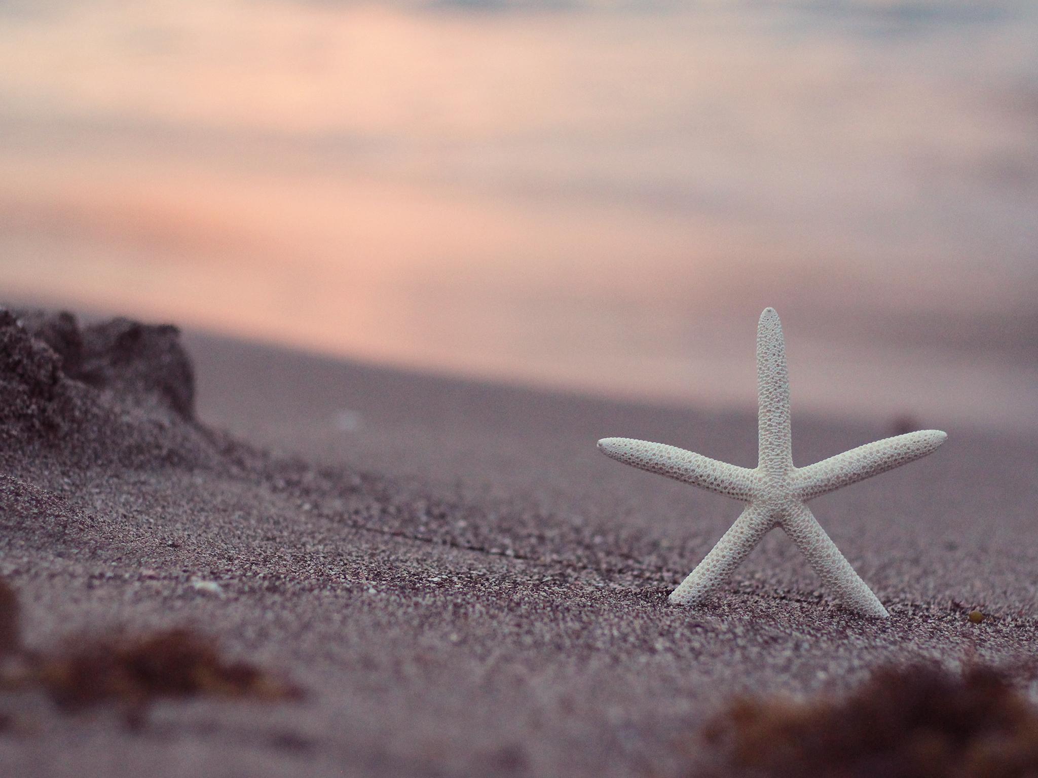 レユニオン島への行き方と観光のポイント!インド洋に浮かぶ絶景の島!