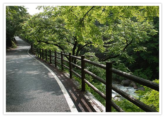 会津武家屋敷の見どころは?入場料金や割引情報・アクセス方法も紹介!