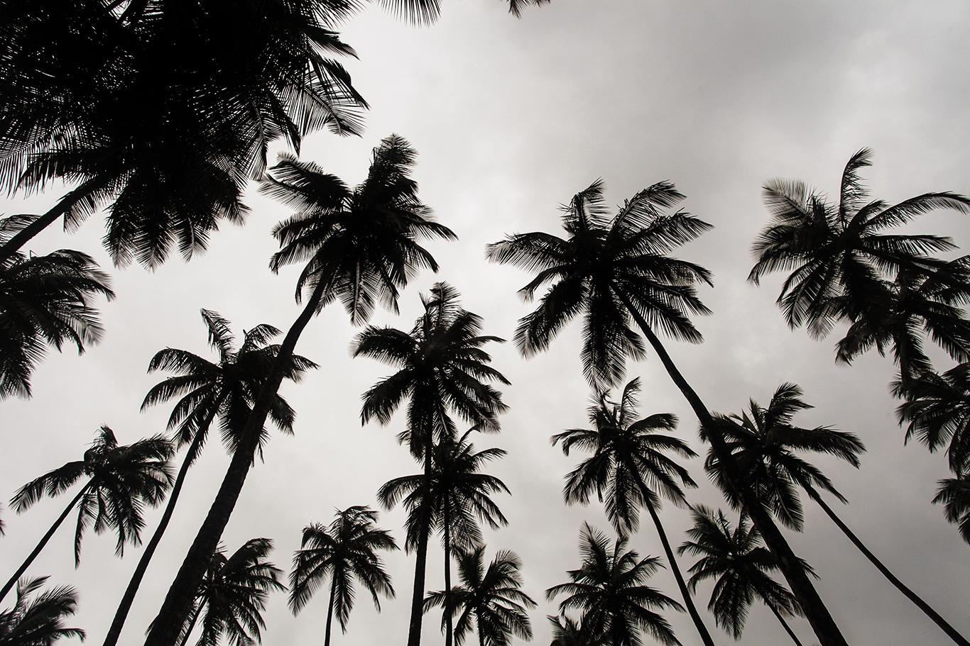 リベリア観光ランキング!人気スポットやおすすめの見どころも