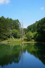 阿智村の観光おすすめスポット11選!おすすめの温泉や宿の情報も!