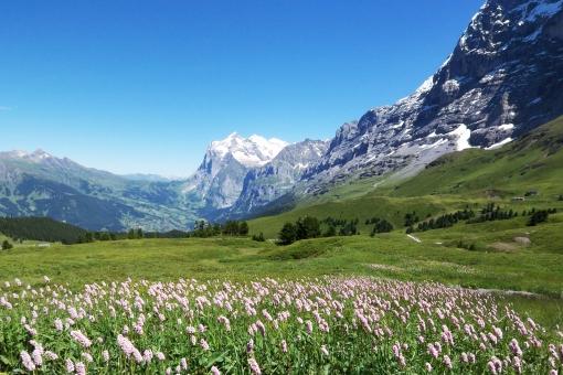 スイス旅行の費用やベストシーズンは?人気観光地への持ち物リストも!