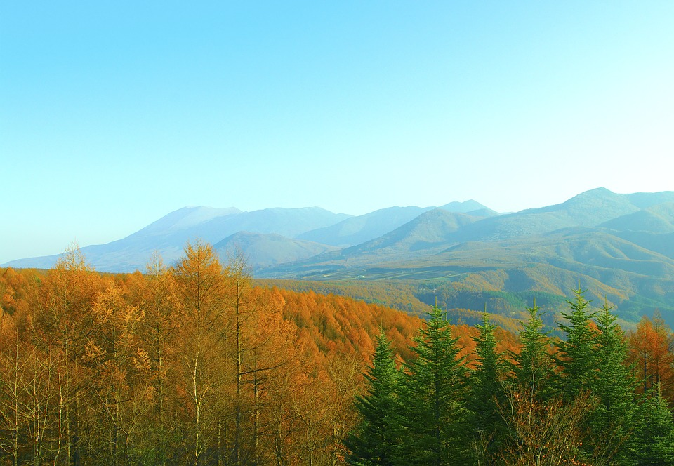 中山道の鳥居峠はハイキングがおすすめ!紅葉時期やアクセスも紹介!
