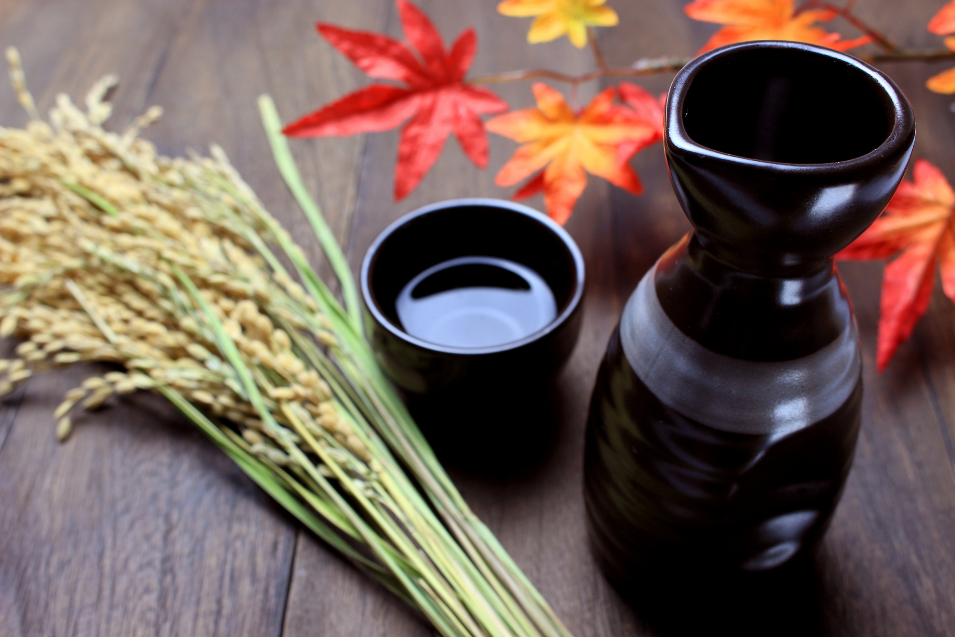 金沢の日本酒おすすめランキング!お土産にも人気の有名銘柄紹介!