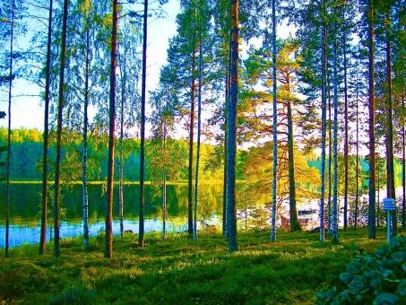フィンランド流サウナの入り方は?混浴で湖に飛び込む?本場で体験したい