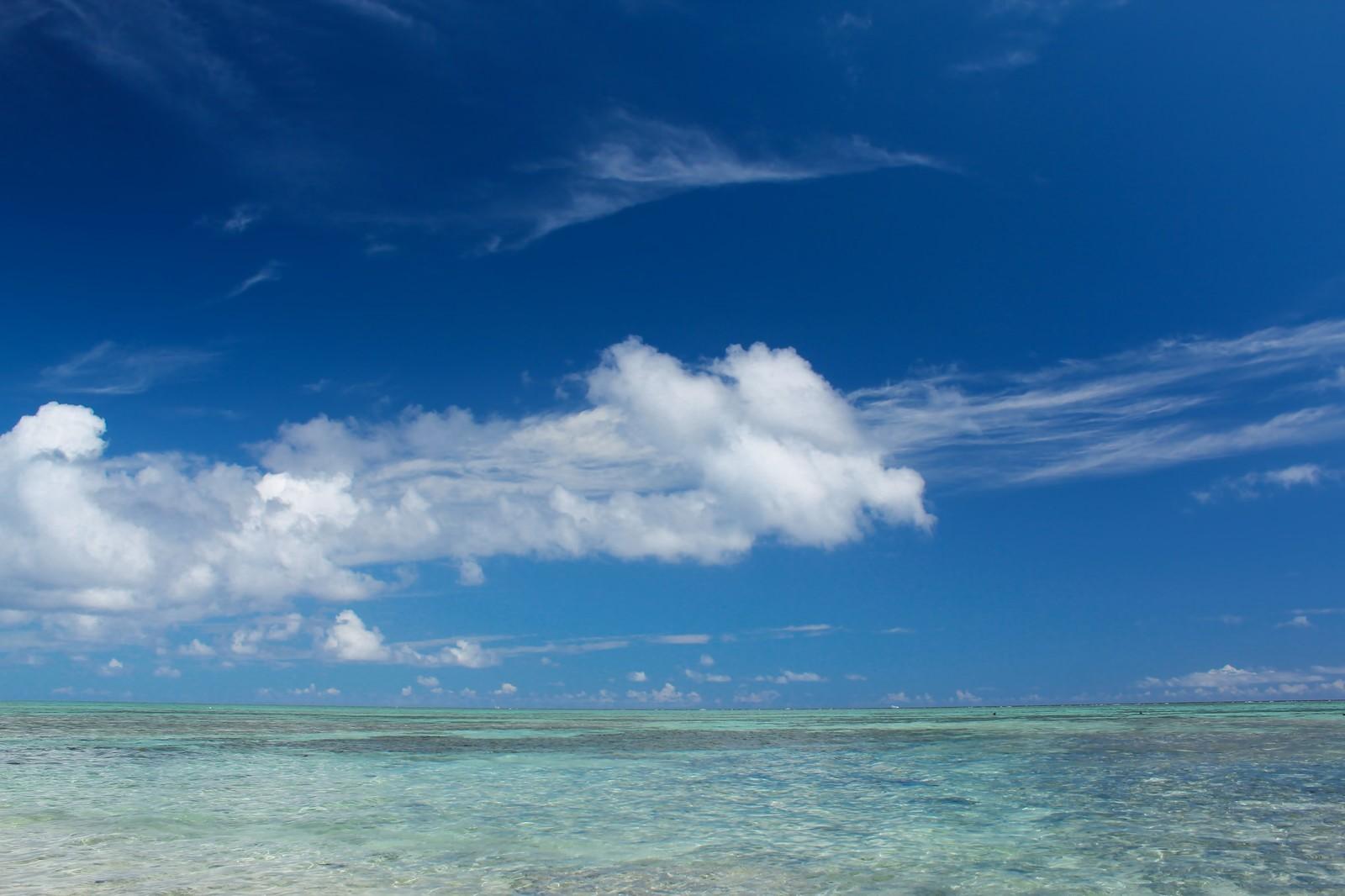 グレートブルーホールはカリブ海の神秘的な穴!気になる深さやダイビング情報!