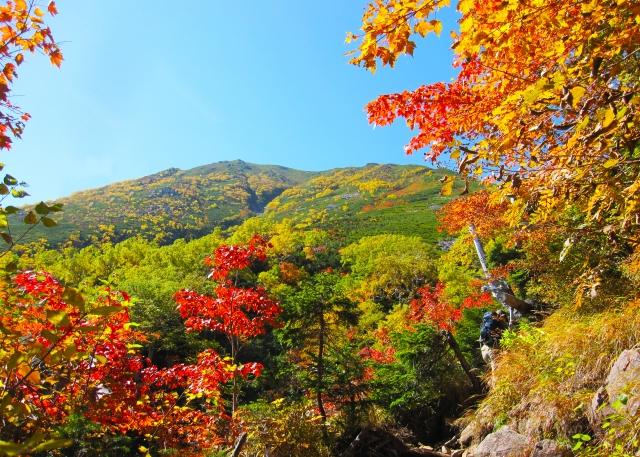 八ヶ岳の紅葉情報!見頃時期や名所・おすすめスポットなど紹介!