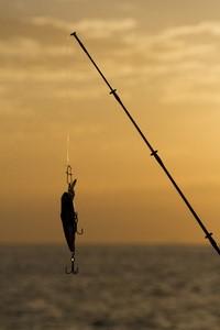 下田港の見所紹介!釣りが楽しめる場所は?食事処や遊覧船もあり!