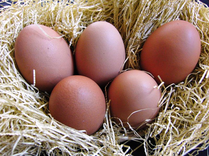 名古屋のオムライス人気店ベスト7!ふわとろ半熟卵がおいしい!