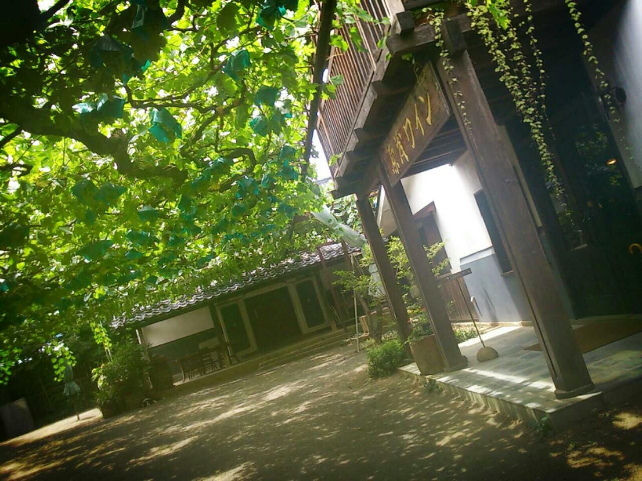 甲府市内のワイナリー巡りがおすすめ!工場見学や試飲も楽しめる!