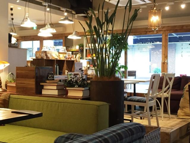 小田原のカフェならここ!おしゃれでランチもおすすめの人気店もご紹介!