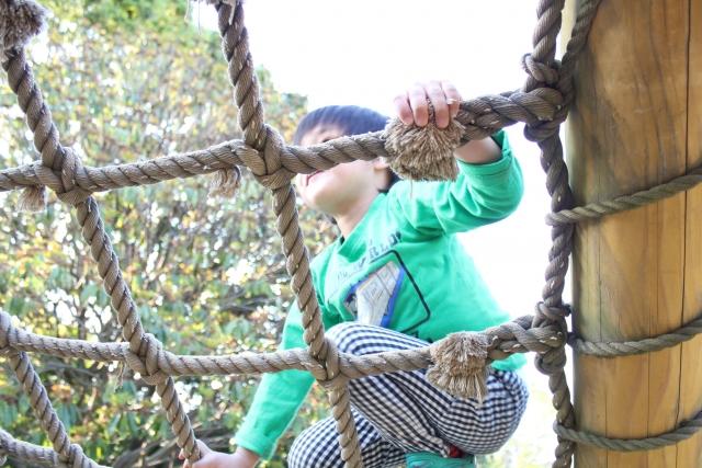 栃木の人気アスレチックを厳選!大人も子供も楽しめる公園や自然がたくさん!