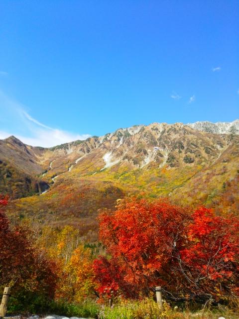 立山の紅葉スポットの見頃は?絶景を楽しむおすすめレジャー!