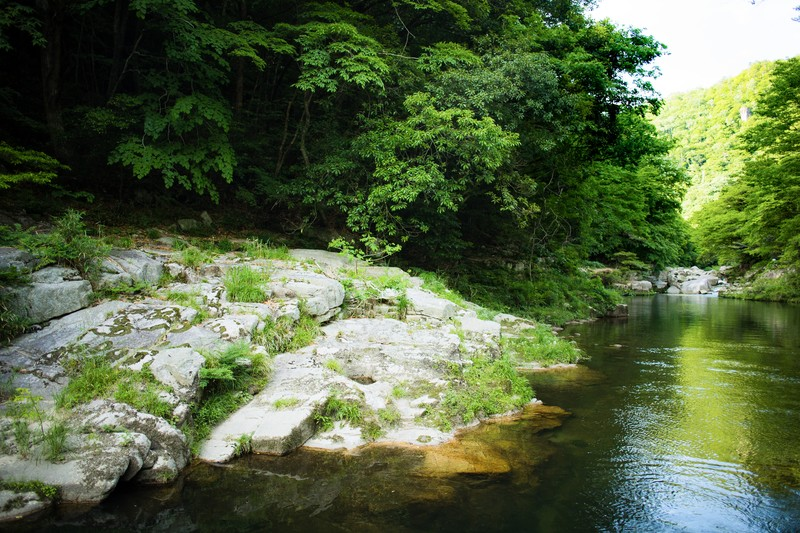 奥日光の観光スポットおすすめ9選!四季折々の自然を満喫しよう!
