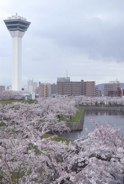 五稜郭タワーは函館の人気観光スポット!お得に入れる割引クーポン情報まとめ!