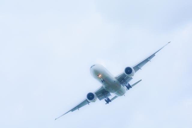 「さくらの山公園」とは?成田空港が一望できる桜の名所で飛行機撮影も!