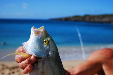 苫小牧の釣りは初心者にもおすすめ!立入禁止ポイント等の注意情報も紹介!