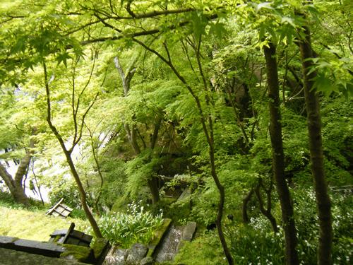 京都・法輪寺の見どころを紹介!嵐山の十三参りや針供養とは?